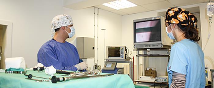 Chirurgie sous cœlisocopie